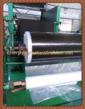 Сертификаты ISO9001 для листа Roofling фабрики резиновый, строительного материала