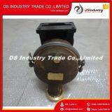 MarineMeerwasser-Pumpe 3655857 des dieselmotor-Nh220 Nt855