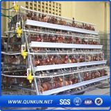 Cage chaude de ferme de poulet de vente