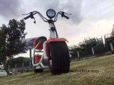 """""""trotinette"""" elétrico Harley do estilo popular de 2016 com o """"trotinette"""" da cidade da forma das rodas grandes"""