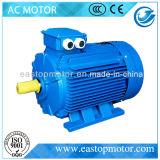 Y3 motor de CA trifásico de la máquina con la norma ISO (Y3-315L2-2)