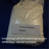 USP 표준 시험 E 약제 화학제품 스테로이드 테스토스테론 Enanthate