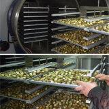 Lyophilizer do secador de gelo da máquina de secagem de gelo do vegetal de fruta da flor