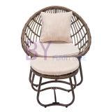 by-487 продают салон оптом ротанга отдыха мебели напольного сада двухкусочный