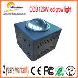 126W穂軸LEDはプラントフルーツ野菜のために軽く育つ
