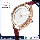 Caja de reloj de la aleación moderna de la mujer del reloj (DC-035)