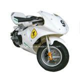 bici Pocket 49cc con il prezzo poco costoso