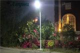 1つの太陽街灯の12V 80W 100W LEDすべて