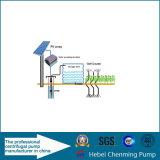 Pondsのための熱いSale Solar Water Pump Exporter