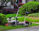 2 ruedas ponen verde la vespa eléctrica Es5014 del rodillo de 500W 36V del empuje sin cepillo retro personal del litio con aprobado por la CEE
