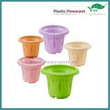 カラー装飾的な植木鉢(KD2500N-KD2509N)