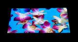 Pantalla LED interior de pH2.5mm HD con instalación colgante, apilada y curvada