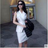 Il vestito ufficiale funzionante dai vestiti della nuova donna di stile