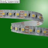 Luz de tira bicolor de SMD 3528 Dimmable LED