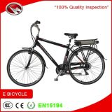CE cinese Approved Electric Bike di Cheap con Rear Rack