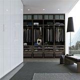 De moderne Garderobes van de Kabinetten van de Slaapkamer