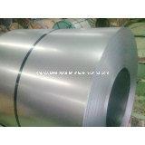 Steel galvanisé dans Coil