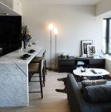 아파트 (HF-07)를 위한 Kaviar 단순한 설계 홈 가구
