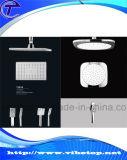 Taraud de mélangeur annexe de tête de douche de main de salle de bains