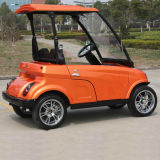 Mini2 Seats Street Legal Golf Cart mit EWG (DG-LSV2)