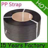 Riem met grote trekspanning van de Verpakking van de Dikte van 0.5mm de Plastic