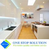 Mobilia bianca degli armadi da cucina di rivestimento della lacca di colore di alta lucentezza Handless (ZY 1075)
