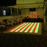 Illuminazione DMX RGB LED Flowering portatile variopinto Dance Floor della discoteca per la festa nuziale