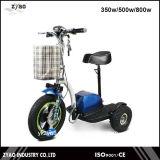 シートTrikeが付いている電気スクーター350ワット3の車輪の