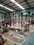 Оборудование пригодности/оборудование гимнастики/Crossfit (MJ-15)