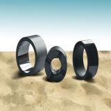 펌프의 실리콘 탄화물 밀봉 반지는 기계적 밀봉 부속을 분해한다
