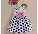 Desgaste doce das crianças do vestido das meninas de flor dos miúdos do PONTO de polca da forma