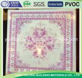 Azulejo del techo del yeso del diseño del PVC