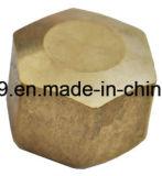 Ajustage de précision en laiton américain de noix d'élém. de Fmale