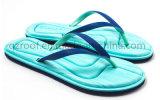 2016 ботинок тапочки Flop Flip ЕВА женщин для повелительницы (RF16120)