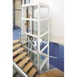 Competitive Price Villa House Elevatorの合計Elevatorの贅沢なHome Lift