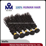공장 Direct Sale 5A Grade Kinky Curly 브라질 Human Hair