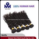 Cheveux humains brésiliens bouclés crépus de catégorie de la vente directe 5A d'usine