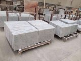 Bianco Carrare White Marble/Tile pour Flooring ou Wall Cladding