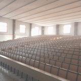 Vectores y sillas para los estudiantes, silla de la escuela, silla del estudiante, silla para los muebles de escuela, silla del auditorio, sillas del teatro de conferencia (R-6228) de la escala