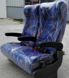 Luxuriöses Passagier-weiches bequemes Selbstsofa-berühmter Sitz