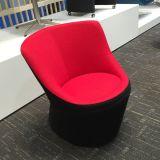 Chaise à niveau élevé de meubles à la maison de conception