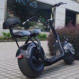 Nieuwe Producten Twee de Elektrische Autoped van Zetels 1000W met Schokbreker (jy-ES005)