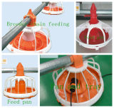 Machines automatico in Poultry House per Broiler Breeder e Layer