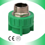 PPR Male Coupling con Brass