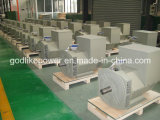 Cer, ISO genehmigte berühmten schwanzlosen Drehstromgenerator-Generator der Fabrik-22kw (JDG184F)