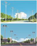 8m Pole 30W Solar-LED Straßenlaterne-Batterie auf die Oberseite