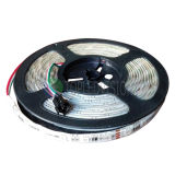 Opción direccionable de la C.C. de la tira 60LEDs 12V/24V de Digitaces RGB LED