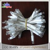 Heiße Verkaufs-weiße Farbe 10m-Gummidekoration-Weihnachtszeichenkette-Licht