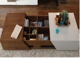Mesa de centro de madera de la nueva del hotel sala de estar moderna de Furniturn (T-92)