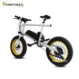 bici eléctrica ocultada 36V del neumático gordo de la batería de 20inch 250W/bicicleta eléctrica plegable/bici gorda del neumático E